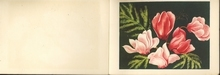 Blumen 8,5 x 13,5 cm