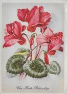 Blumen 14,5 x 10 cm