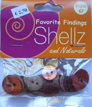 Favorite Findings - Shellz 67